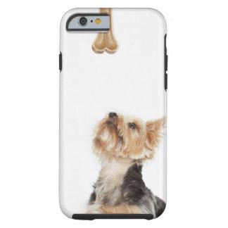 Hund som tittar upp på ben tough iPhone 6 skal