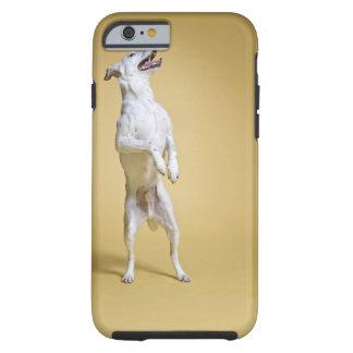 Hundanseende på hind ben tough iPhone 6 case
