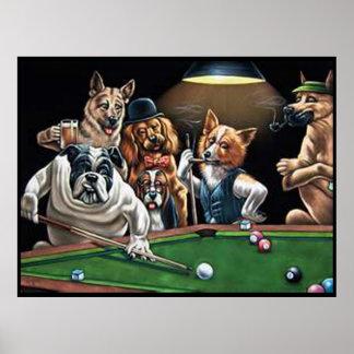 Hundar som leker bassängen - bulldogg upp poster
