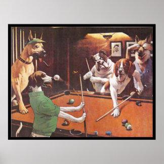 Hundar som leker bassängen - den skrapande beaglen poster