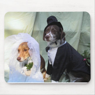 Hundbröllop Mus Mattor