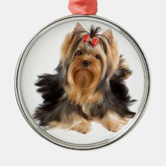 Hunden av showen klassificerar julgransprydnad metall
