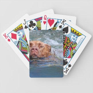 Hundsimning Spelkort