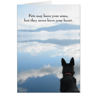 Hundsympati - husdjurmajlämna din ärmar hälsningskort
