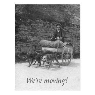 Hundvagn med skäggig manflytta vykort