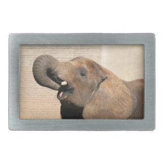 Hungrig elefant