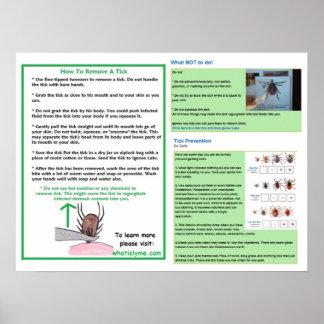 Hur man tar bort en fästingaffisch för den Lyme Poster