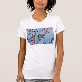 HusFinches, kärlek bland knopparna 2 Tee Shirts