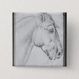 Huvud av en häst, från det Vallardi album Standard Kanpp Fyrkantig 5.1 Cm
