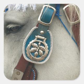 Huvud av en häst fyrkantigt klistermärke