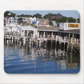 Hyannis hamn, uddtorsk musmatta