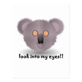 hypnotisk koala vykort