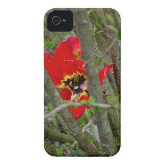 I blom Case-Mate iPhone 4 fodral
