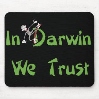 I Darwin litar på vi Musmatta