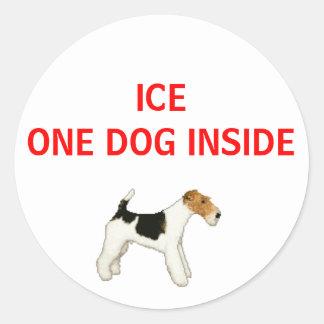 I fall att av hundinsida för akut en runt klistermärke