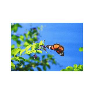 I fullt fjärilstryck för Flyg Canvastryck