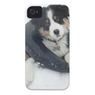 i inre rör i snön Case-Mate iPhone 4 skal