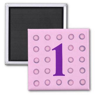 I lagra rosa och purpurfärgade magneter för polka