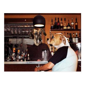 I puben vykort