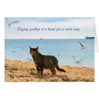 I sympati för död av katten hälsningskort