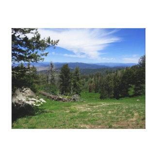 Idaho vildmark canvastryck