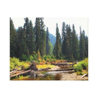 Idaho vildmark sträckt kanvastryck