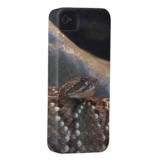 Illavarslande orm iPhone 4 Case-Mate cases