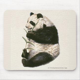 Illustration av den jätte- pandaen som matar på musmatta