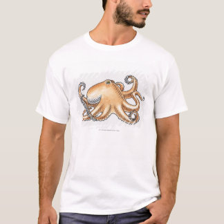 Illustration av en bläckfisk tröja