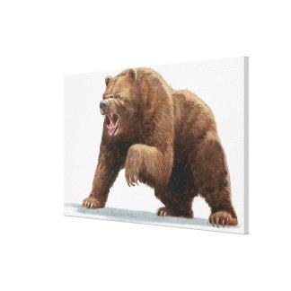 Illustration av en brun björn canvastryck