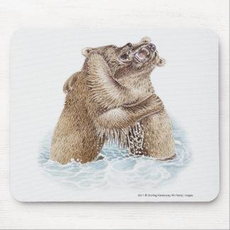 Illustration av två bruna björnar som slåss i musmatta