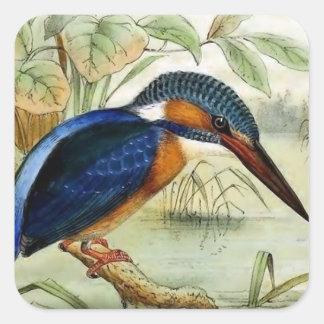 Illustration för Kingfishervintagefågel Fyrkantigt Klistermärke