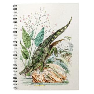 Illustration för krokodil för anteckningsbok
