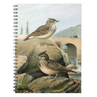Illustration för Larksvintagefågel Anteckningsbok Med Spiral
