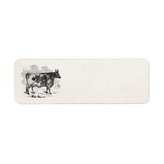 Illustration för tjur för personlig för returadress etikett