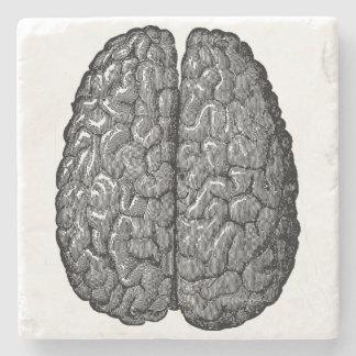 Illustration för vintagemänniskahjärna underlägg sten