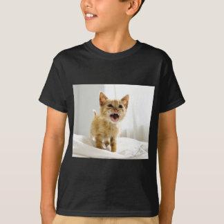 Ilsken kattunge t shirts