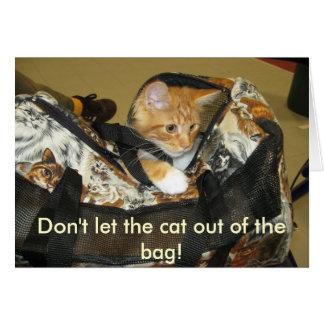IMG_0129 låter inte katten ut ur hänga lös! Hälsningskort