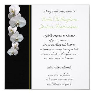 Inbjudan 5.25x5.25 för vitOrchidbröllop