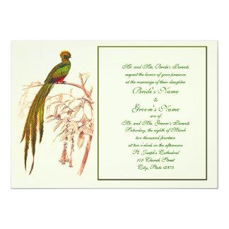 Inbjudan för fågel för TBA-vinnare 7-19-10 grön