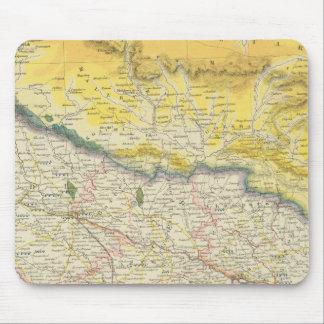 Indien och Nepal Musmatta