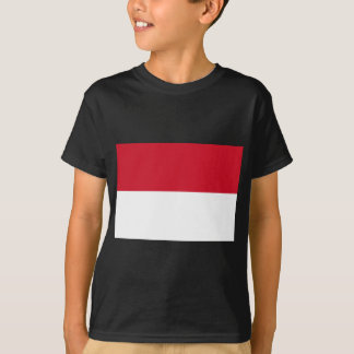indonesia t-shirts
