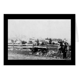 Infanteri och läger i Tenallytown 1864 Hälsningskort