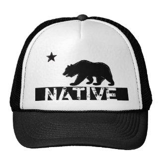 Infödd hatt för symbol för statlig flagga för Kali Keps