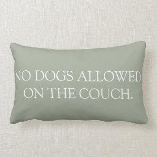 Inga hundar som är tillåtna på soffalumbaren, lumbarkudde