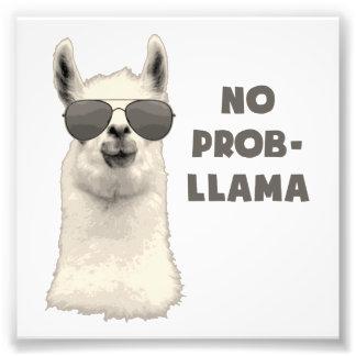Ingen problemLlama Fototryck