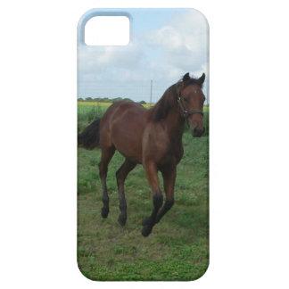 Inkvartera hästen iPhone 5 skal