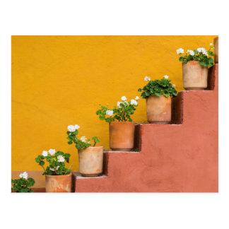 Inlagda blommor på trappuppgång vykort