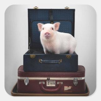 Inpackning upp Piggy klistermärkear Fyrkantigt Klistermärke