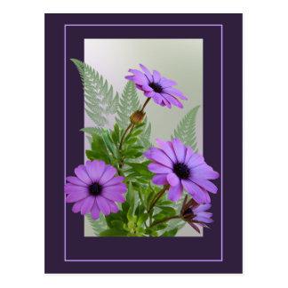 Inramad purpurfärgad daisyvykort - TBA Vykort